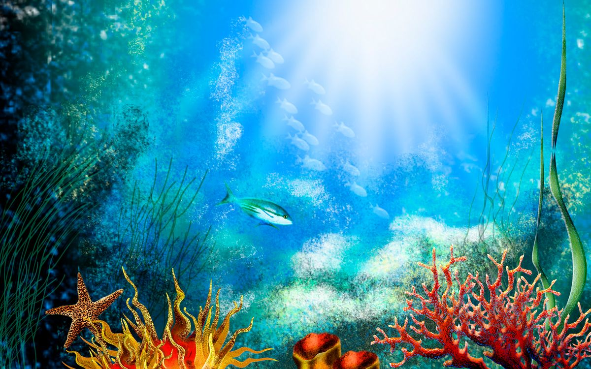 Обои аквариум, рыбки, дно картинки на телефон