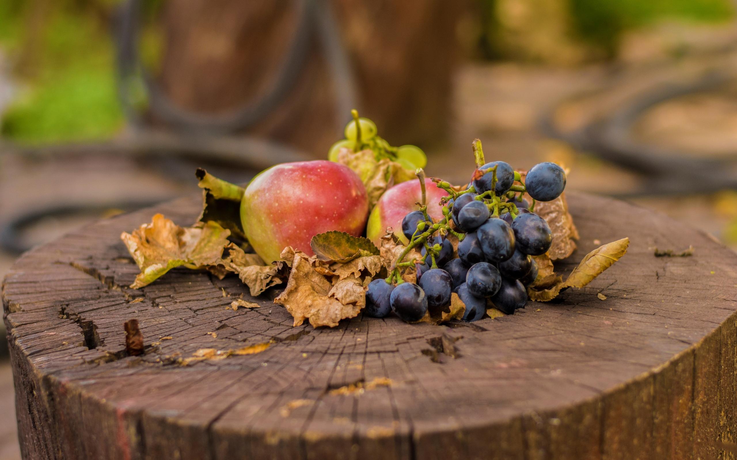 пень, листья, фрукты