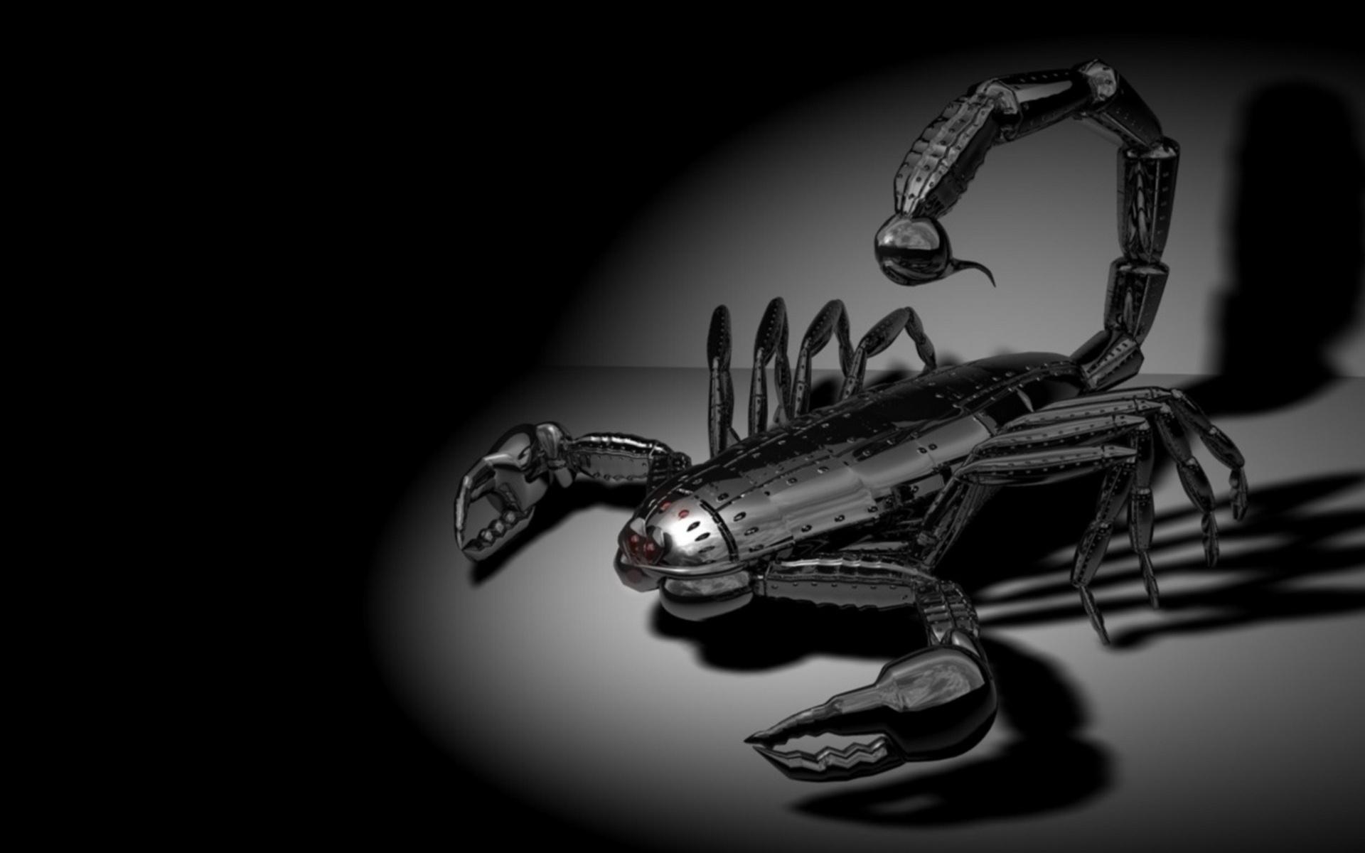 скорпион, черный, темно