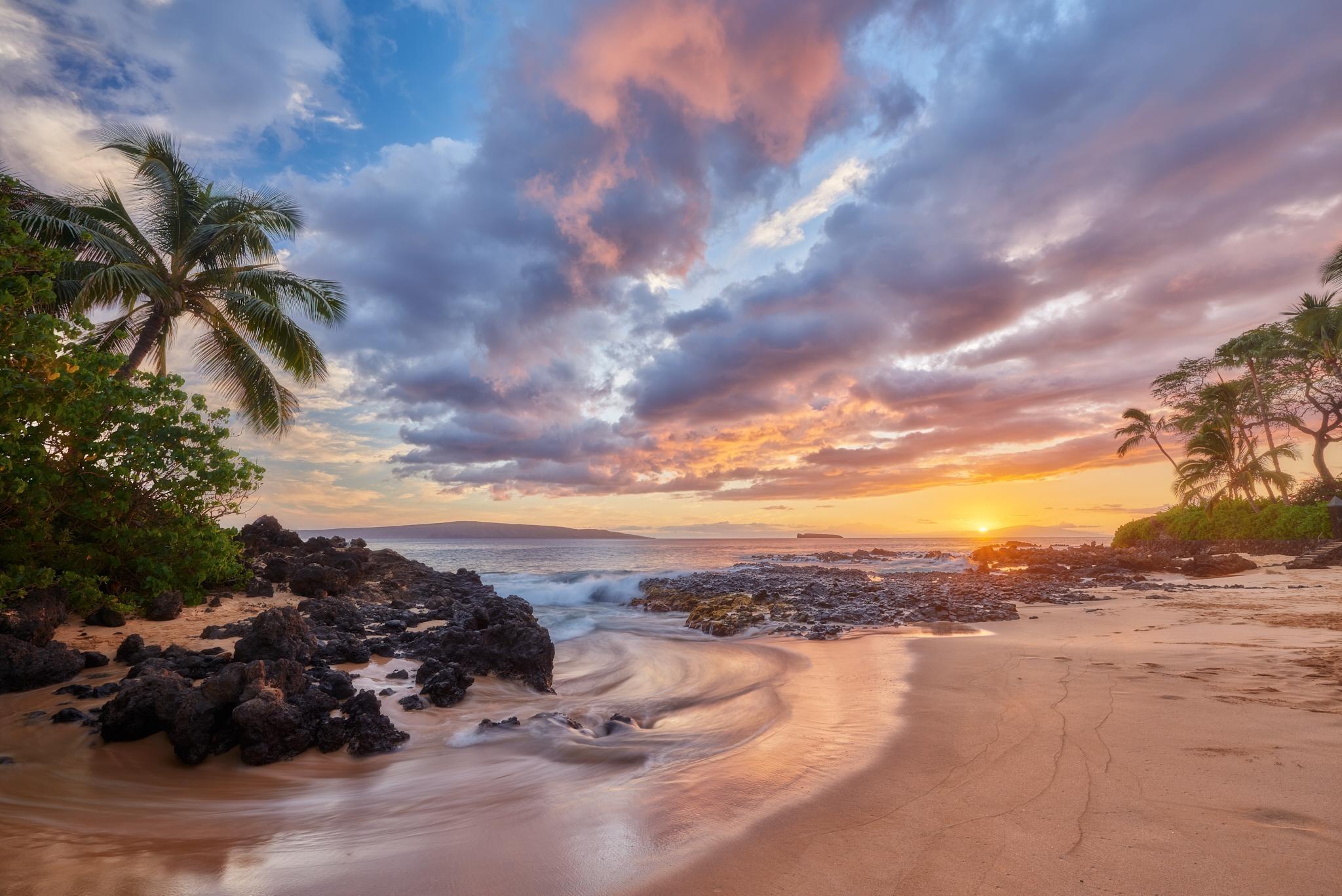 обои закат, море, пальмы, берег картинки фото