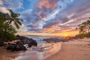 Бесплатные фото закат,море,пальмы,берег,пляж,пейзаж