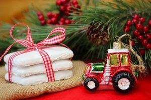 Фото бесплатно звездочки, новогоднее, печенье, новогодние, новый год