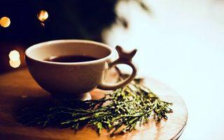 Фото бесплатно чашка чая, зелень, стол