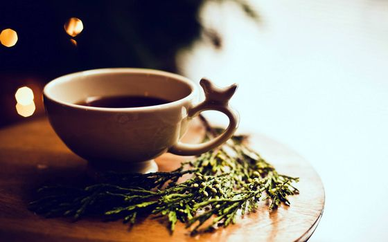 Photo free Cup of tea, herbs, table