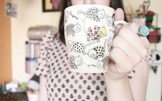 Обои чашка, рука, коты, рисунки, изображение, кольцо, роза, девушка, квартира, разное, стиль