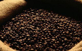 Бесплатные фото кофе,зерна,много,коричневые,мешок,мешковина,напитки
