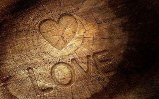 Бесплатные фото love, сердечка, любовь, дерево, пень, надпись, настроения