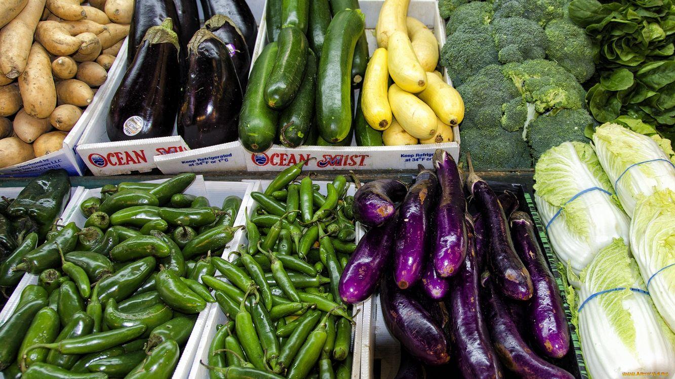 Фото бесплатно овощи, перец, капуста, салат, баклажан, листья, еда, еда