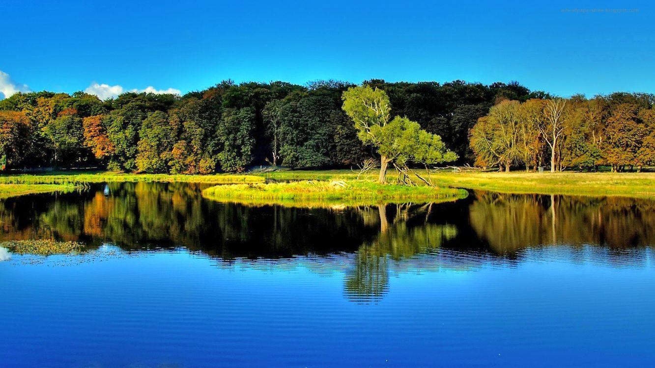 Фото бесплатно озеро, лес, отражение, пейзажи, пейзажи