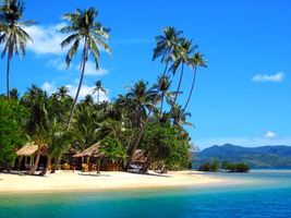 Download wallpaper tropics sea beach