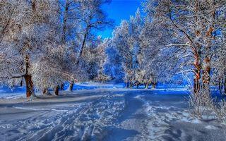 Заставки иней, зима, пейзажи