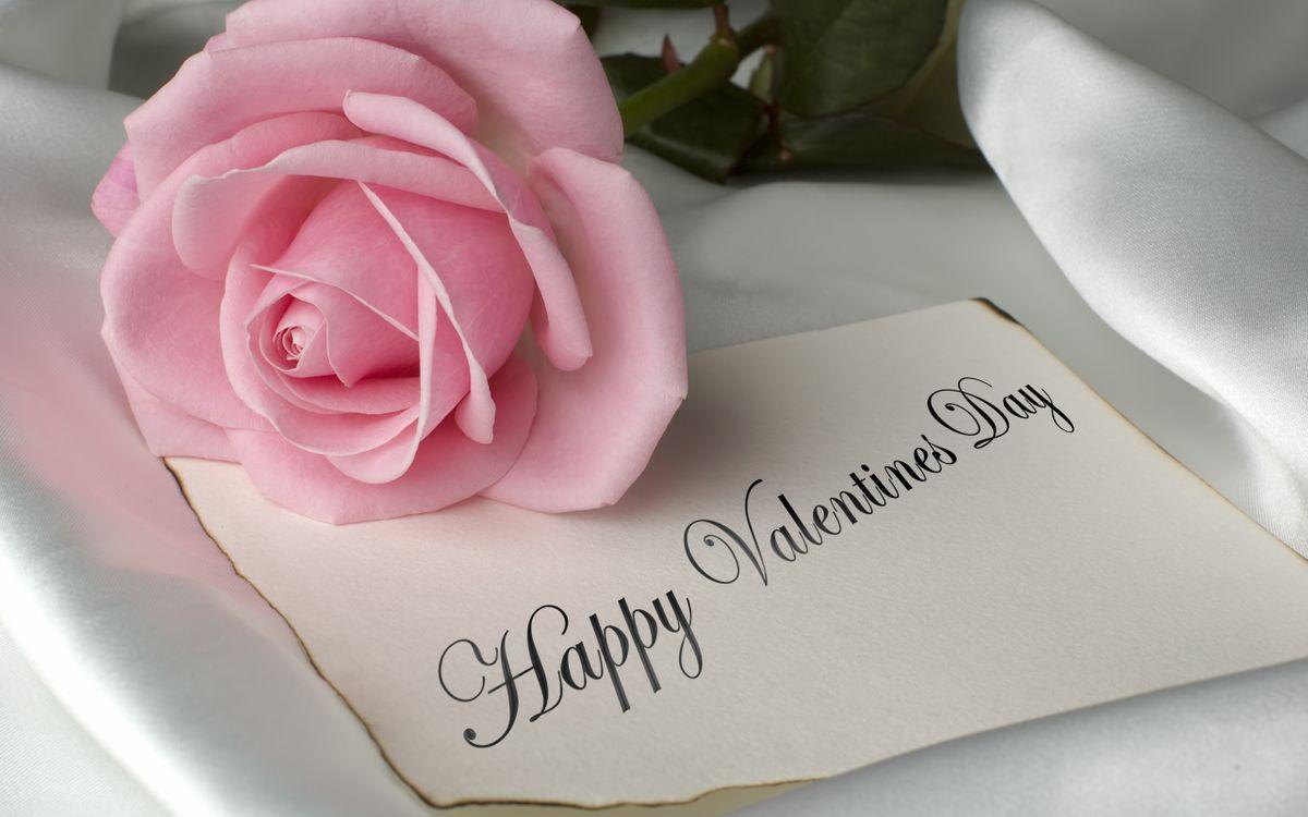 Фото бесплатно pink rose, valentines day, romantic - на рабочий стол