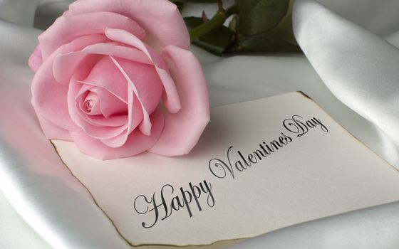 Photo free pink rose, valentines day, romantic