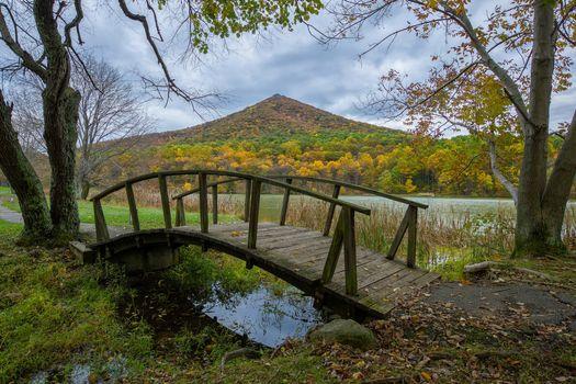 Фото бесплатно Blue Ridge Parkway, Виргиния, осень, водоём, мост, деревья, пейзаж