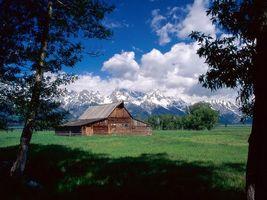 Бесплатные фото дом,лес,деревья,трава,зеленая,горы,снег