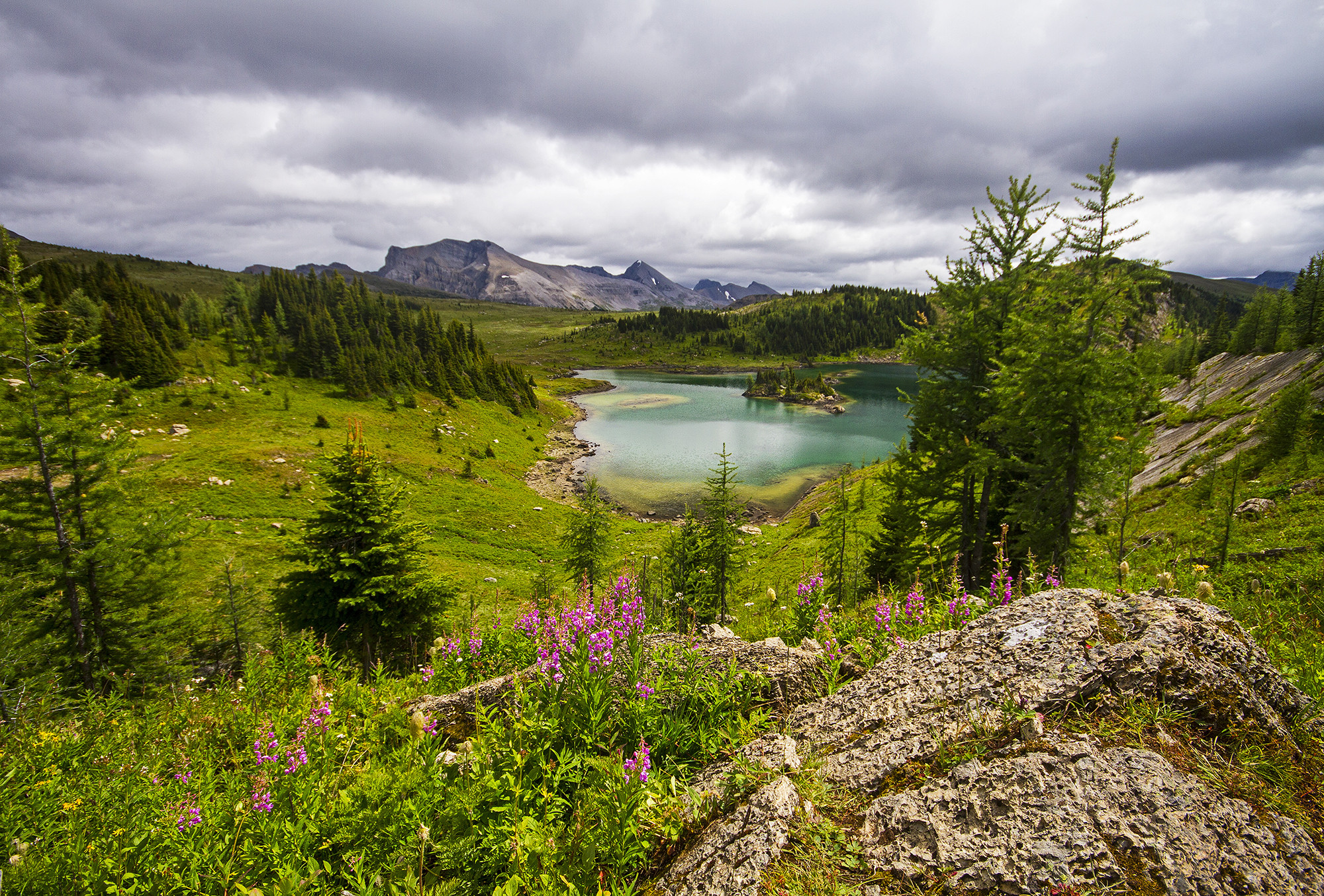 обои горы, озеро, деревья, тучи картинки фото