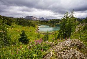 Обои горы, озеро, деревья, тучи, облака, Banff National Park, Canada, пейзаж