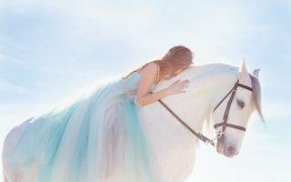 Обои лошадь, белая, морда, челка, грива, девушка, верхом, лежит, животные