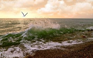 Заставки море, волна, вода