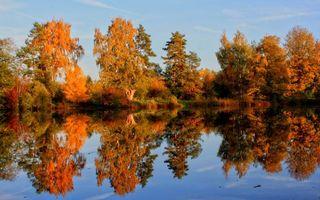 Фото бесплатно деревья, пейзаж, отражение