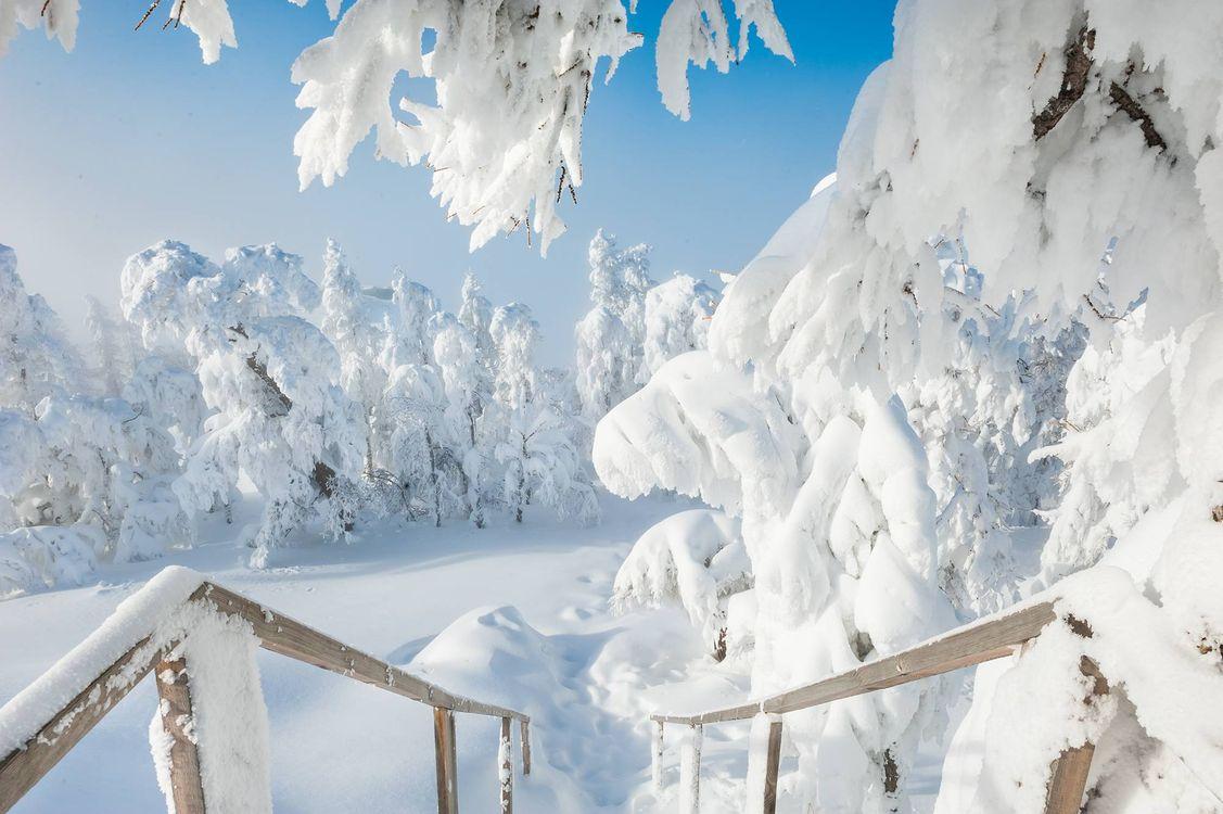 Фото бесплатно после снегопада, снег, сугробы - на рабочий стол
