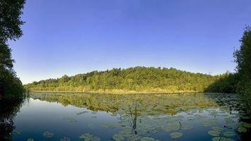 Фото бесплатно река, вода, отражение, деревья, трава, небо, природа