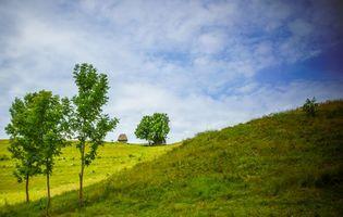 Фото бесплатно горы, деревья, Румыния