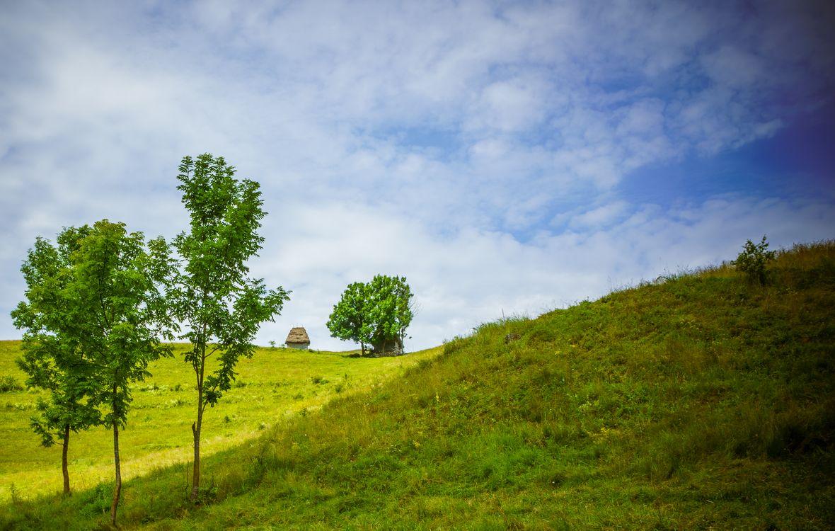 Фото бесплатно Румыния, горы, холмы, деревья, пейзаж, пейзажи
