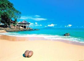 Бесплатные фото тропики,сейшелы,море,пляж,пейзажи
