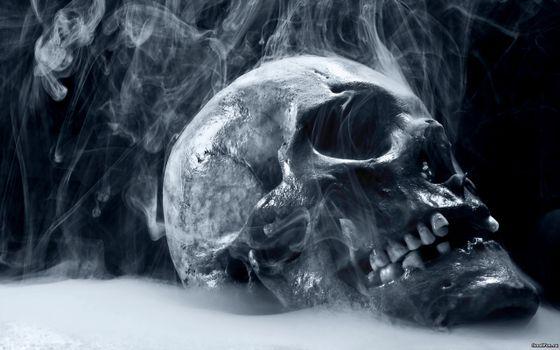 Фото бесплатно череп, человеческий, дымится