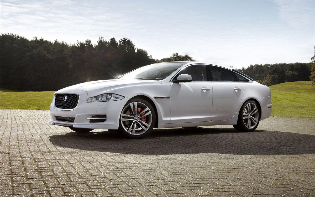 Фото бесплатно jaguar, xj, белый, решетка, капот, плитка, деревья, холм, трава, небо, отблеск, машины, машины