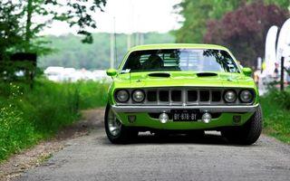 Бесплатные фото авто,тюнинг,зеленая,асфальт,перед,деревья,трава