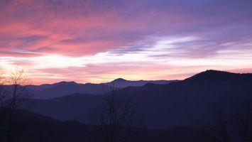 Фото бесплатно красивые, небо, деревья