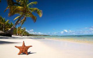 Фото бесплатно океан, лето, жара