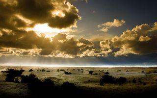Фото бесплатно равнина, трава, кустарник, горизонт, море, небо, облака, солнце, лучи, природа