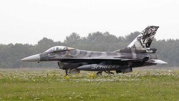Бесплатные фото самолет,серый,крылья,ракета,трава,цветы,авиация