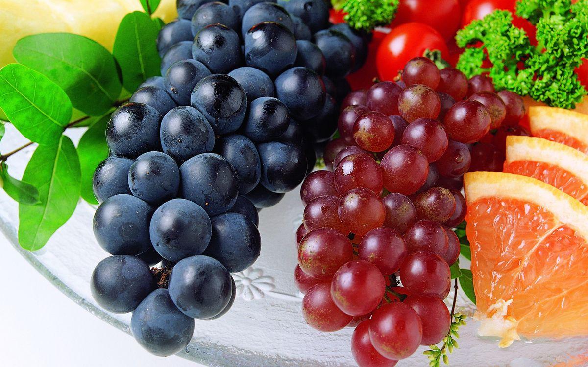 Обои виноград, фрукты, ягоды, ветка, гроздь, апельсин, грейпфрут, дольца, цитрус, трава, еда на телефон | картинки еда - скачать