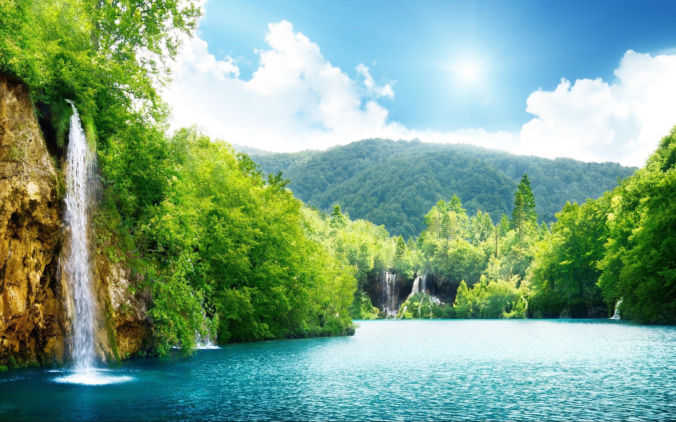 Фото лето природа на телефон