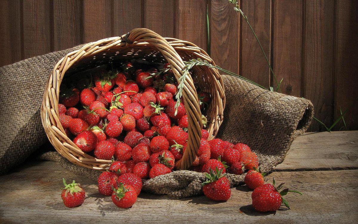 Фото бесплатно ягода, клубника, красная - на рабочий стол