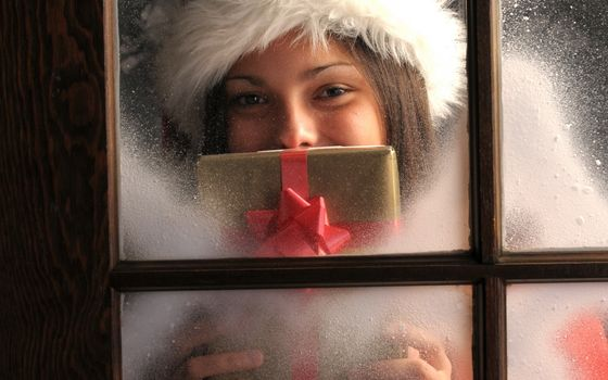 Фото бесплатно снегурка, подарок, дверь