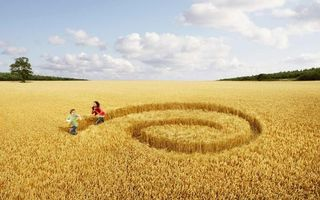 Фото бесплатно настроения, поле, девушка