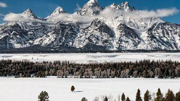 Бесплатные фото горы,зима,снег,елки,поле,лес,большая гора