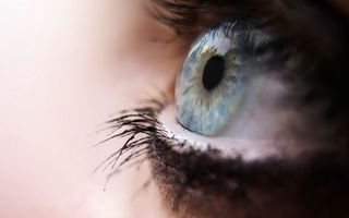 Фото бесплатно глаз, голубой, ресницы