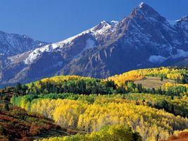 Фото бесплатно снег, горы, зелень