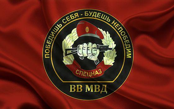 Фото бесплатно логотип, спецназ, ткань