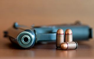 Photo free pistol, cartridges, barrel