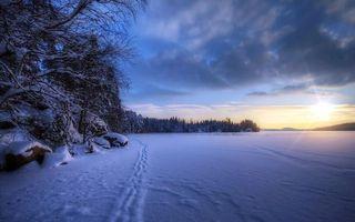 Заставки закат,солнце,зима,замерзшие,озеро,снег,деревья
