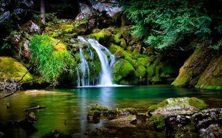 Фото бесплатно зелёный водопад, мох, трава