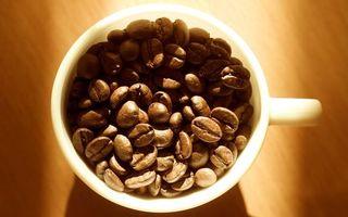 Фото бесплатно чашка, белая, кофе, зерна, свет, тень, разное
