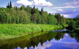 Фото бесплатно реки, пейзажи, березы